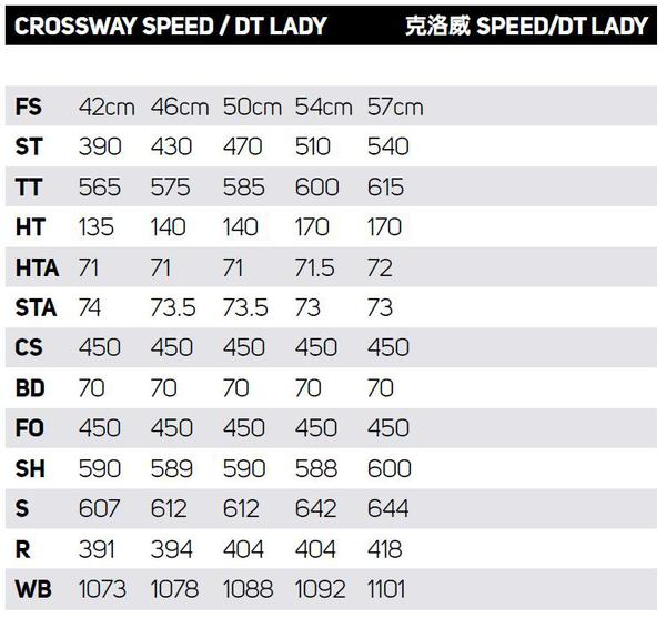 crossway-speed-dt-lady.jpeg